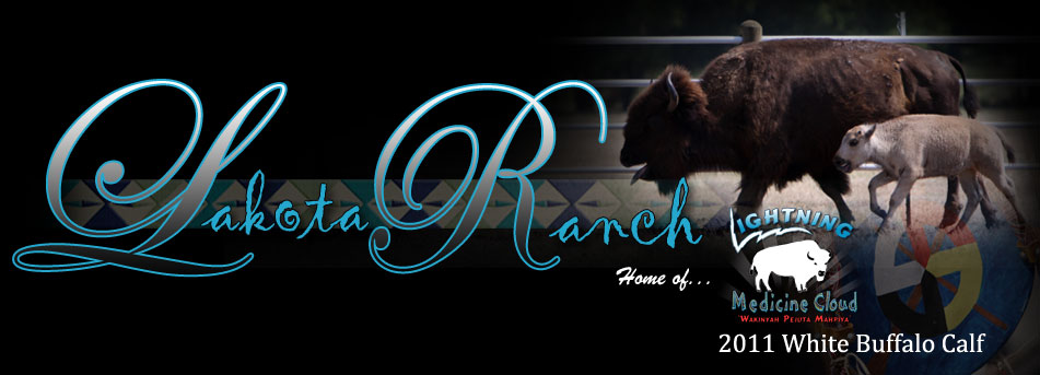 Lakota Ranch